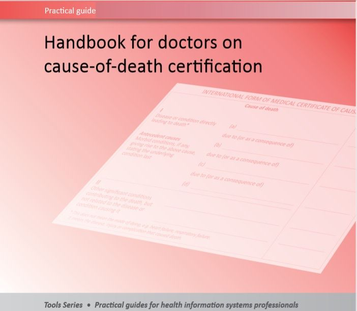 Death Certificate Template 09