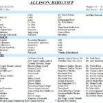 8 Free Resume Templates
